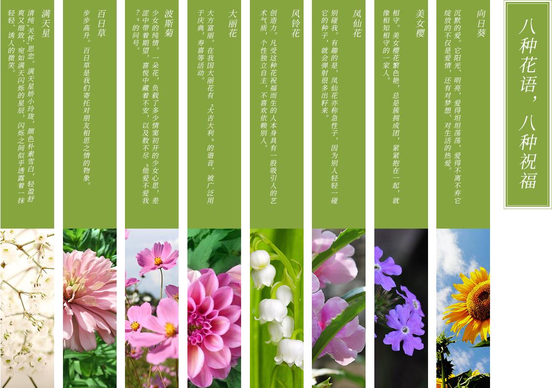 小罐花_纪念商品_商品详情【灵山拈花湾预订网】